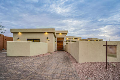 Oro Valley Single Family Home For Sale: 11159 N Joy Faith Drive