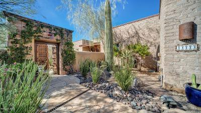 Marana Single Family Home Active Contingent: 11771 N Adobe Village Place