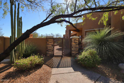 Oro Valley Single Family Home Active Contingent: 829 W Sleeping Snake Place