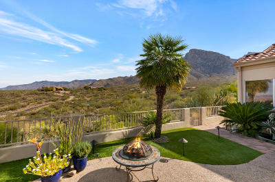 Tucson Single Family Home For Sale: 9926 N Bighorn Butte Drive