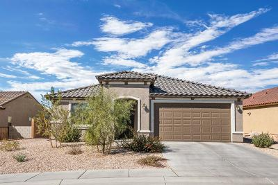 Tucson Single Family Home Active Contingent: 11899 N Raphael Way