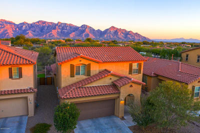 Oro Valley Single Family Home For Sale: 12840 N Oak Creek Drive
