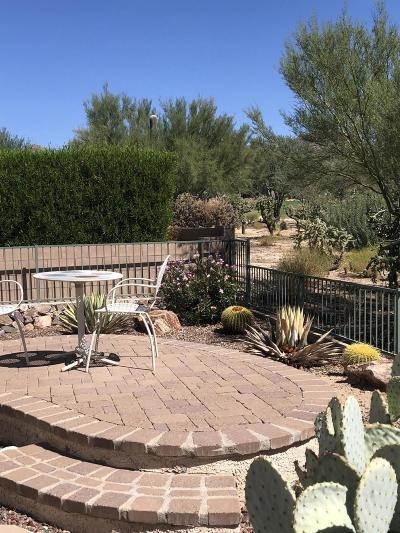 Marana Single Family Home Active Contingent: 5398 W Winding Desert Drive