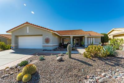 Oro Valley Single Family Home For Sale: 2270 E Ruellia Drive