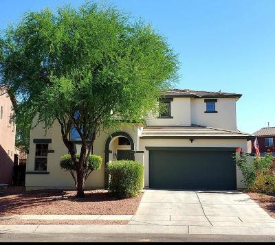 Sahuarita Single Family Home Active Contingent: 14229 S Via Horma