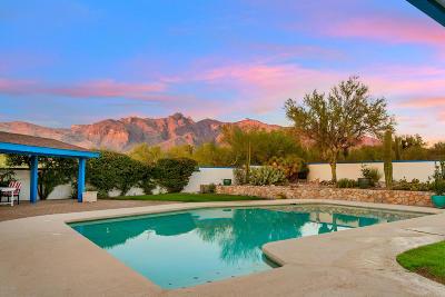 Tucson Single Family Home For Sale: 2705 E Camino La Zorrela