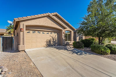 Tucson Single Family Home For Sale: 9721 E Sandcastle Court