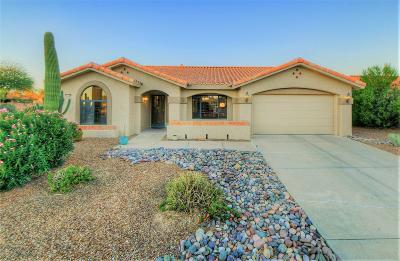 Oro Valley Single Family Home For Sale: 1101 E Haystack Drive