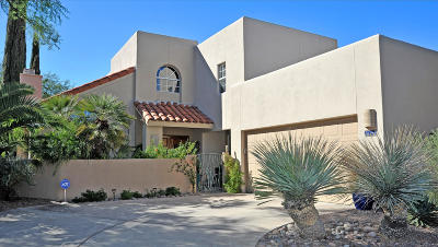 Tucson Single Family Home For Sale: 3049 N Palomino Park Loop