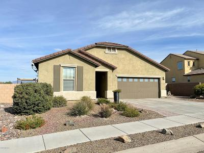 Vail Single Family Home Active Contingent: 645 S Desert Haven Road