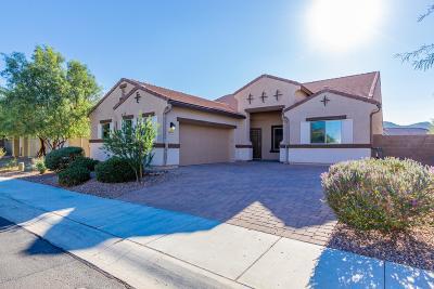 Marana Single Family Home For Sale: 8803 W Saguaro Moon Road