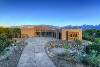 Oro Valley Single Family Home For Sale: 14170 N Silver Cloud Drive