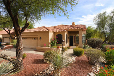 Tucson Single Family Home For Sale: 5972 N Golden Eagle Drive