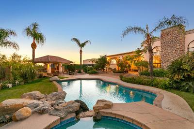 Tucson Single Family Home For Sale: 11555 E Pantano Trail