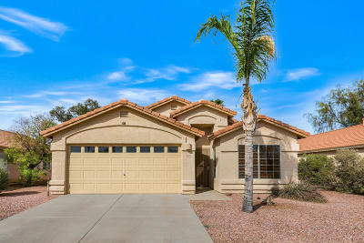 Tucson Single Family Home For Sale: 6968 W Avondale Place
