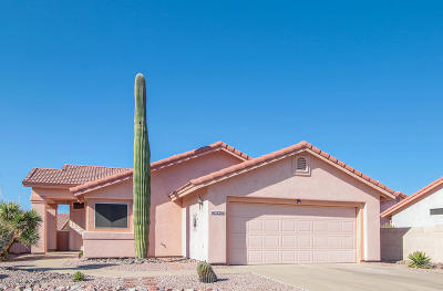 Tucson Single Family Home For Sale: 9931 N Meadow Ranch Place