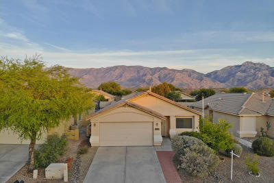 Oro Valley Single Family Home For Sale: 13236 N Mortar Pestle Court