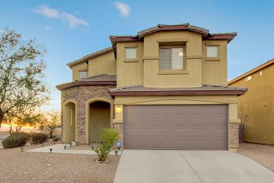 Tucson Single Family Home For Sale: 6632 S Chinese Lanterns Drive
