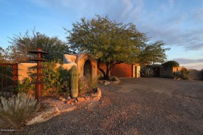 Tucson Single Family Home For Sale: 10750 W Calle Madero