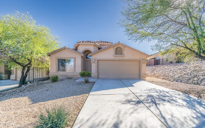 Vail Single Family Home For Sale: 10890 S Arrowhead Spring Drive