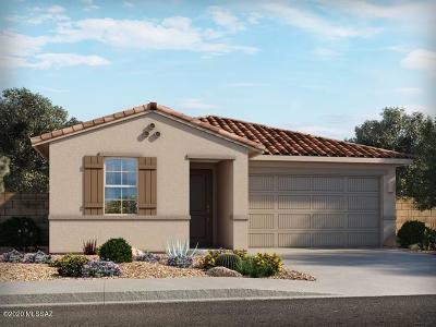 Tucson Single Family Home For Sale: 7204 S Via Gaucho Viejo