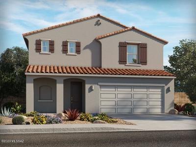 Tucson Single Family Home For Sale: 7196 S Via Gaucho Viejo