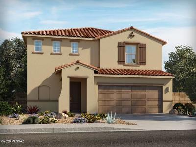 Tucson Single Family Home For Sale: 7180 S Via Gaucho Viejo