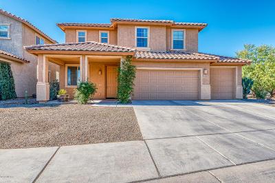 Marana Single Family Home For Sale: 12747 N Greenberry Drive