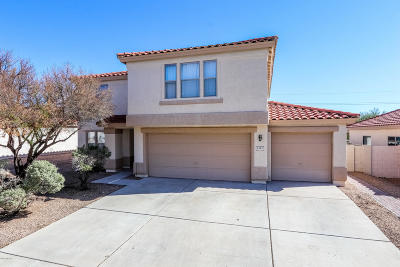 Tucson Single Family Home For Sale: 8502 N Deer Valley Drive