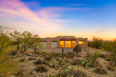 Tucson Single Family Home For Sale: 2695 W Cougar Canyon Trail