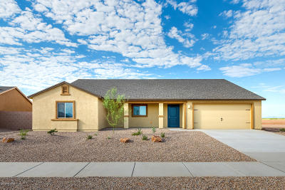 Tucson Single Family Home For Sale: 7451 W Tierra Road