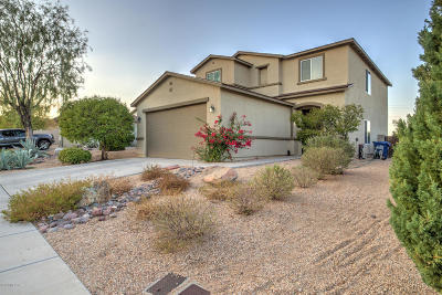 Sahuarita Single Family Home For Sale: 1348 W Calle Libro Del Retrato