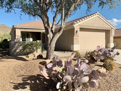 Marana Single Family Home For Sale: 13602 N Holly Grape Drive