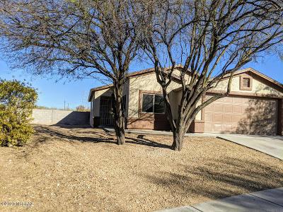Tucson Single Family Home For Sale: 5275 S Camino Laguna Seca