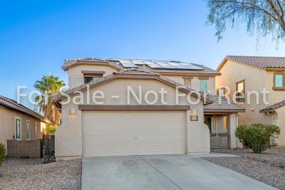 Tucson Single Family Home For Sale: 9650 N Deimos Drive