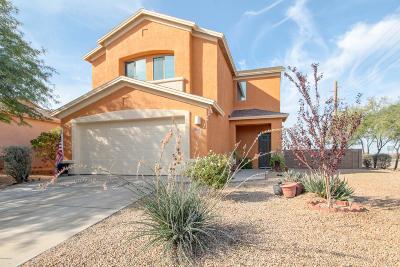 Tucson Single Family Home For Sale: 6502 S Giuliani Avenue