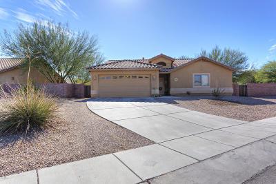 Sahuarita Single Family Home Active Contingent: 1040 E Providence Canyon Drive