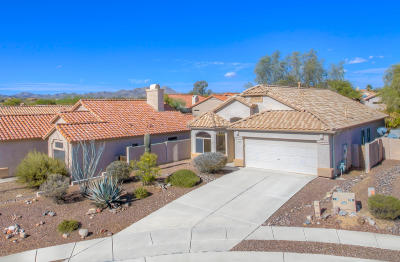 Oro Valley Single Family Home Active Contingent: 12140 N Makayla Canyon Drive
