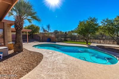 Tucson Single Family Home For Sale: 1601 W Magee Road