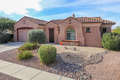 Oro Valley Single Family Home For Sale: 13727 N Tessali Way