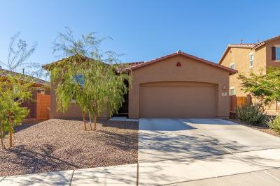 Tucson Single Family Home Active Contingent: 38436 S Trifecta Court