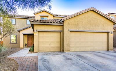 Sahuarita Single Family Home For Sale: 1012 E Empire Canyon Lane