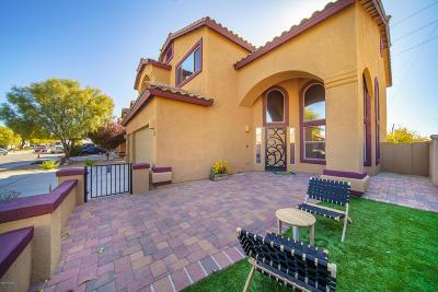 Sahuarita Single Family Home Active Contingent: 361 W Calle Paso Suave