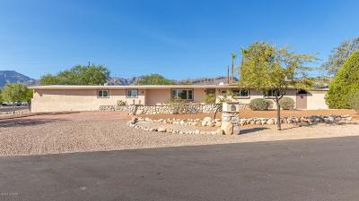 Tucson Single Family Home For Sale: 8801 E Palisade Circle