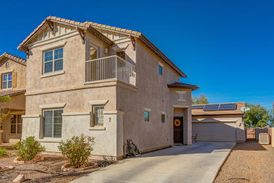 Sahuarita Single Family Home For Sale: 82 W Camino Espiga