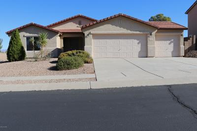 Vail Single Family Home For Sale: 443 E Sterling Canyon Drive