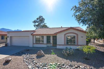 Oro Valley Single Family Home For Sale: 14329 N Sky Trail