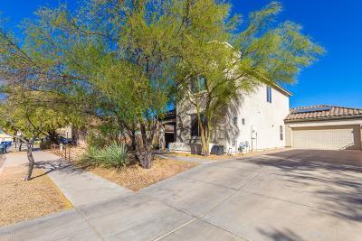Tucson Single Family Home For Sale: 5971 S Moon Desert Drive