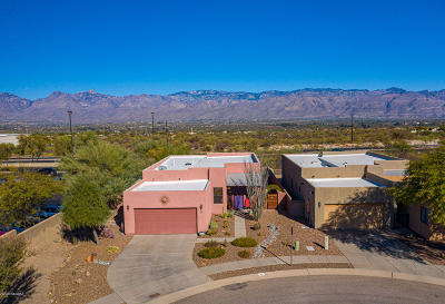 Tucson Single Family Home For Sale: 89 S Sycamore Creek Place