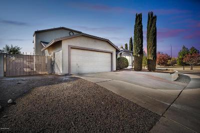 Tucson Single Family Home For Sale: 1649 W Oak Hollow Drive